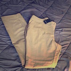NWT beige, straight leg, stretchy, Torrid pants!